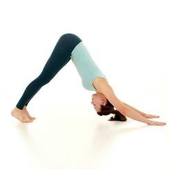 Yoga Fareham